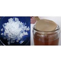 Pack 100g de Granules de Kéfir d'Eau o Fruit + Disque SCOBY Kombucha
